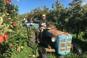 backpacker on tractor